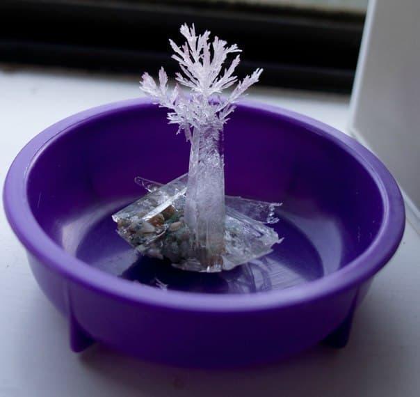 Проект вырастить кристалл в домашних условиях