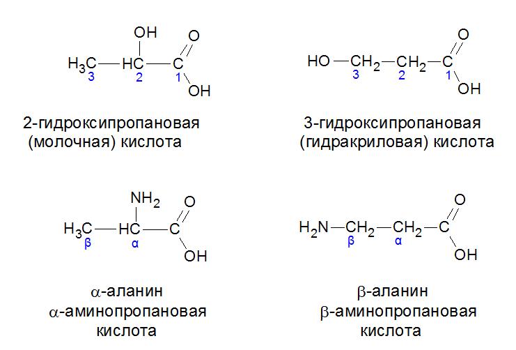 изомеры Молочной кислоты и аланина