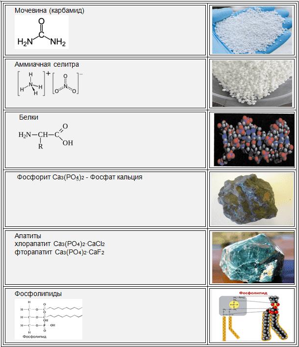 Азот, фосфор_нахождение в природе