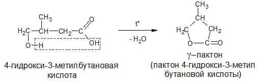 образование лактона